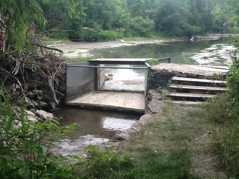 East Channel Dam in low flow summer season - no flow moving through the dam to the East Channel of the Eramosa